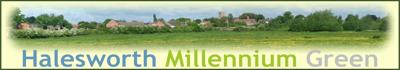 Halesworth Millennium Green Banner