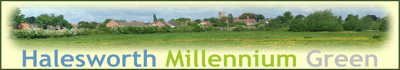 Halesworth Millennium Green