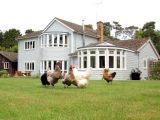 Hare Lodge Bed and Breakfast Bed & Breakfast