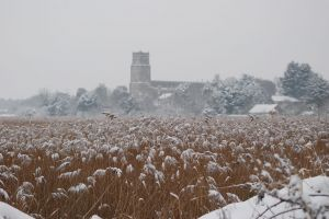 Blythburgh Church seen across snowy reeds
